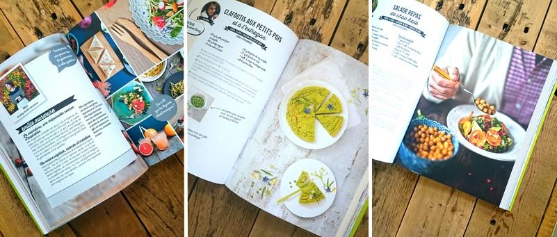 pages livre blogueuses cuisinent vegan larousse