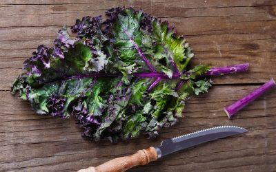 Oxalates, acide oxalique  dans les verdures vs acidité et acide urique